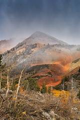 A feast for the eyes (AgarwalArun) Tags: sony a7m2 sonyilce7m2 landscape scenic nature views easternsierra bishopca bishopcreek lakes leaves autumn fallfoliage mountains inyonationalforest