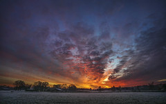 One day I will find the right words.. (andredekok) Tags: sunrise golden farmland daybrake winter cold