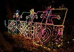 Bellingrath Magic Christmas in Lights (ciscoaguilar) Tags: christmas bellingrath alabama theodore lights