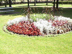 Flower bed in Huntingdon Town Park 3rd July 2006 002 (D@viD_2.011) Tags: huntingdon town park 2005 flower bed 3rd july 2006