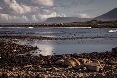 Cape Point Nature Reserve (theAdhocracyUK) Tags: beach bird boulder capepoint coast cormorant egret landscape sacredibis sea southafrica