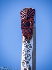 Sculpture (Vurnman) Tags: newzealand rotorua vacation holiday tepuia
