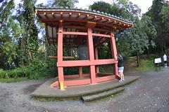 DSC_5798 (jptexphoto) Tags: valleyofthetemples theboydointemple kaneohe hawaii 12232018