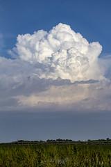 082618 - Updrafts & Anvil 017 (NebraskaSC Severe Weather Photography Videography) Tags: flickr nebraskasc dalekaminski nebraskascpixelscom wwwfacebookcomnebraskasc stormscape cloudscape landscape severeweather severewx nebraska nebraskathunderstorms nebraskastormchase weather nature awesomenature storm thunderstorm clouds cloudsday cloudsofstorms cloudwatching stormcloud daysky badweather weatherphotography photography photographic warning watch weatherspotter chase chasers newx wx weatherphotos weatherphoto sky magicsky extreme darksky darkskies darkclouds stormyday stormchasing stormchasers stormchase skywarn skytheme skychasers stormpics day orage tormenta light vivid watching dramatic outdoor cloud colour amazing beautiful updraft thunderhead stormviewlive svl svlwx svlmedia svlmediawx