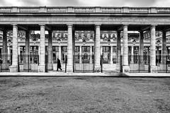 Parigi N. 24 - 2018 #LeicaQ (Nene Minetti) Tags: paris parigi palaisroyale leicaq leica bn bw