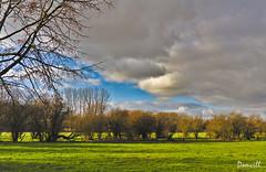 L'approche du printemps (DOMVILL) Tags: domvill norddefrance arbres ciel nuages paysage wwwflickrcompeoplevildom