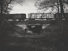 On bicycles (wojciechpolewski) Tags: bicycle bicycles forestpathway forest path bridge railway railwaybridge monochromatico monochromatic monotone monochrome monochrom blancoynegro blackwhite blanconegro blackandwhite greyscale noncolour blindcolour colourblind kedzierzynkozle poland wpolewski photo photos