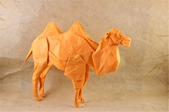 Shuki Kato - Bactrian Camel (Malleon) Tags: complex shuki kato origami bactrian camel nature study unryu mulberry animal
