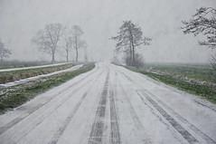 A winter lane. (Bastiaan21) Tags: winternederland nederlandvandaag netherlands nederland zuidholland alblasserwaard niederlande paysbas nikon nikond90 nik