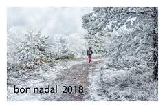 bon nadal  /feliz navidad  /merry christmas (Josep M.Toset) Tags: arbres aigua bosc boira núvols catalunya paisatges neu josepmtoset d800 baixcamp nikon muntanya hivern muntanyes·de·prades felicitació nadal nikon24120mm3556gedvr