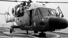 XZ 262 - Westland Lynx WG 13 (Laurent Quérité) Tags: canonfrance canonae1 noirblanc blackwhite helicoptere aviation aéronef aéronavale aéronautiquenavale frenchnavy marinenationale militaryaircraft xz262 westland lynxwg13 frégatedegrasse d612