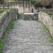 A WALK ALONG THE RIVER DODDER [ CLONSKEAGH TO MILLTOWN ]-146729