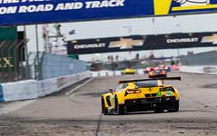 8S4A9035 (rickstratman26) Tags: chevrolet corvette car cars racecar racecars racing motorsport motorsports sportscar chevy c7r c7 sebring wec