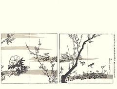 Japanese wisteria, tree peony, fringed pink, lily, plum Chinese milk-vetch, violet, field horsetail, dandelion and skylark (Japanese Flower and Bird Art) Tags: flower wisteria floribunda fabaceae tree peony paeonia suffrutiocsa paeoniaceae fringed pink dianthus superbus caryophyllaceae lily lilium liliaceae plum prunus mume rosaceae chinese milkvetch astragalus sinicus violet viola violaceae field horsetail equisetum arvense equisetaceae dandelion taraxacum asteraceae bird skylark alauda arvensis alaudidae hoitsu sakai rinpa picture book japan japanese art readercollection