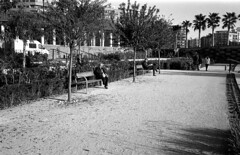 190104_Parc_Central_005 (Stefano Sbaccanti) Tags: bw blackandwhite bn parccentral valencia minox35gl kentmere400 bellinihydrofen analogicait analogue analogico argentique spain spagna selfdeveloped 2019 city