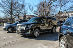 2015 Cadillac Escalade Platinum (Rivitography) Tags: 1dr9528 md cadillac escalade suv 4x4 american gm generalmotors caddy luxury expensive greenwich connecticut 2019 canon 60d adobe lightroom rivitography