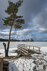 Z19_1410 LT (Zoran Babich) Tags: sweden sverige winter landscape ice frozenlake lake