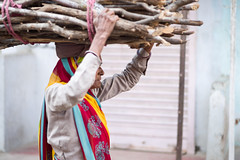 A woman's work (phil.w) Tags: pentax k1 fullframe limited india old lady woman grandmother sari color colour bundle sticks wood logs heavy toil labour carry carrying smcpfa77mmf18 fa77 77mm