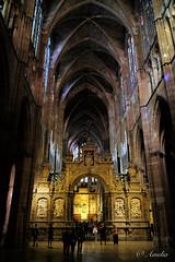 Catedral de Burgos (ameliapardo) Tags: templos catedrales burgos españa castilla monumentos arquitectura fujixt1