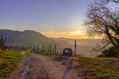 Der Weg (KaAuenwasser) Tags: sonne licht strahlen sonnenstern landschaft schwarzwald berg berge himmel wolken reben wein weinreben wegweiser stein schilder schild dorf baum bäume natur wald nachmittag blau gelb januar 2019 fotografie foto hdr sony a7r3 twop