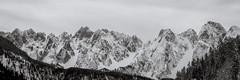Gosaukamm (Markus Hill) Tags: gosau oberösterreich österreich at gosaukamm alps alpen landscape mountain gebirge bw 2019 travel canon winter snow