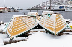 Winter Boats (Karen_Chappell) Tags: winter snow boat boats yellow white nfld newfoundland atlanticcanada avalonpeninsula eastcoast canada pettyharbour rural outport fishing fishingboat canonef24105mmf4lisusm harbour ocean atlantic scenery scenic