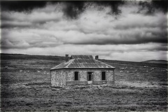 DSC_3339 Deserted Cottage (Manni750) Tags: deserted cottage blackwhite ruin farm farmhouse abandoned history sandstone historical grass sheep clouds cloudy