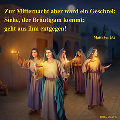Matthäus 25,6 (bibel online) Tags: heiligergeist glauben retter daslamm gottliebt mich gnade biblestudy songsofpraise anbetung zeugnis weisheit anmut bibel evangelium predigen herr christus gott jesus
