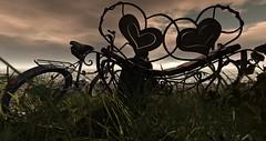 Something Missing (✪Lockhart✪) Tags: secondlife mood nevaestates loneliness grass sky bicycle bench man nutmeg