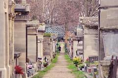 118 - Paris - Février 2019 - le cimetière de Montmartre (paspog) Tags: paris france cemetery cimetière friedhof février februar february 2019 cimetièredemontmartre