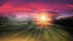 Time for Coffee.... (KissThePixel) Tags: sunrise sunrises longacremanor sky landscape skyscape fireinthesky pinksky redsky sigma nikon nikond750 february 1224mm