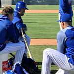 Cubs Spring Training 2019 Gallery 3