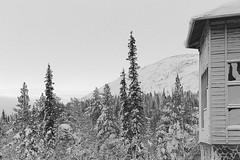Landscape (kalsink) Tags: bw lappi lapland landscape winter snow kellokas äkäslompolo
