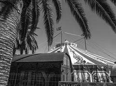 Circo en B/N (efe Marimon) Tags: canonpowershots120 felixmarimon barcelona circo puerto bn circoenbn