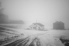 Foggy Farm (Jake_Rogers) Tags: iowa iowaphotography ruraliowa farm farmstead farmlife farming fog foggy mist misty mistymorning midwest