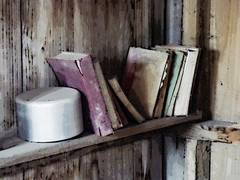 """Left on the Shelf"" (Steve Taylor (Photography)) Tags: books shelf pan aluminium digitalart hut shed brown black contrast green mauve muted wood wooden newzealand nz southisland canterbury christchurch texture worn torn ripped"
