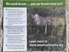 Forests (Veee Man) Tags: gimp nikond5000 loslunas meadowlake newmexico carpet paper nonprofitorganization americanforests ecology environment impeachtrump nature planet botany health trees plants water waterfall words letters green white list website wwwamericanforestsorg five 5 fact facts chicago forest