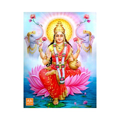 ashta lakshmi 3 (spiritualscience12) Tags: ashtalakshmi ashtakubera ashtalakshmimahahomam ashtalaxmi akshayatritiya akshayatritiya2019 akshayatritiyapuja gold wealth finance vedicfolks