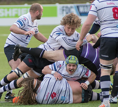 Preston Grasshoppers 29 - 0 Leicester Lions February 09, 2019 38248.jpg (Mick Craig) Tags: action hoppers sportsman fulwood rugbyunion maul preston grasshoppers ruck rfu lineout lightfootgreen lancashire agp sport leicesterlions scrum rugby uk rugger