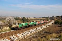 Tractores (Trenesmania) Tags: tren trenes train trains rail railway railroad ferrocarril renfe adif 310 maniobras tractor diesel gm barcelona cantunis lavern subirats rodalies catalunya penedès 311 ffcc 311125 311141 311121 311104