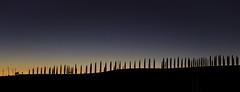 Tramontare (€lis@) Tags: sunset tramonto linee crepuscolo tuscany cipressi toscana cielo sera landscape italy alberi natura luce campagna countryside