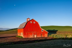 Quiet Morning at the Barn (LensEye View) Tags: architecture barn building frmartinroad farm field goldenhour landscape oakesdale palouse redbarn thepalouse washington agriculture ruralarea unitedstates us