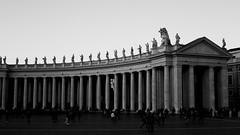 Il colonnato del Bernini (druzi) Tags: sanpietro saintpeters vaticano vatican colonnato bernini biancoenero blackandwhite black white columns contrast rome roma italia italy stpeter noiretblanc