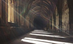 A Magic Moment - Norwich Cathedral Cloisters (suzyhazelwood) Tags: norwich norfolk cathedral cloisters uk sunlight