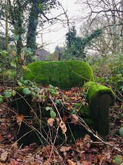 Have a seat (mistermacrophotos) Tags: furniture abandoned green moss back nature winter markyate chair sit seating decay brambles iphone 6 woods fun grassy old refuse garbage everything must go dust recycling recliner leaves mystery england after brexit sic transit gloria mundi