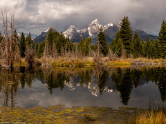 Beaver Pond (Ramona H) Tags: grandtetonnationalpark schwabacher schwabacherlanding tetons wy wyoming nationalpark beaverpond water reflection
