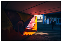 Butterfly (jmvanelk) Tags: nikond610 nikkor2820mm thelightfantastic butterfly color pink yellow blue oldman sunlight backlight contrast urbanjungle buikslotermeer amsterdamnoord shadow mural