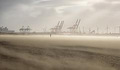 Sandstorm (Eddie Hyde ARPS) Tags: anotherplace crosby landscape storm wind sandstorm beach mersey merseyside