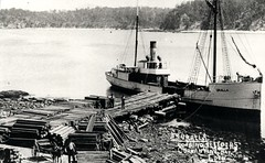 'Uralla' (also 'Tilba') 1908 - 1912 loading sleepers at Eden (Great Lakes Manning River Shipping NSW) Tags: woodenship coastaltrader midnorthcoast glmrsnsw australia greatlakesnsw nswgreatlakes coopernook urallai uralla manningriver painting trove greatlakesmiscellaneousboats allentaylorco nsw denissullivanshipyards tilba uralla1dsbsco denissullivanbsco