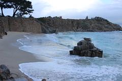 IMG_9766 (mudsharkalex) Tags: california pacificgrove pacificgroveca loverspointpark loverspointbeach beach